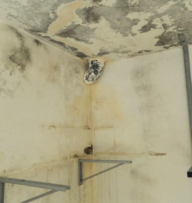 Infiltration d'eau provenant des fissures murales